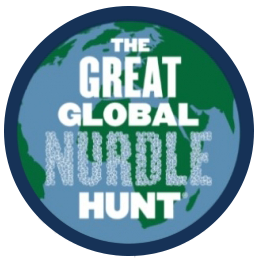 The Great Global Nurdle Hunt | Litter4tokens